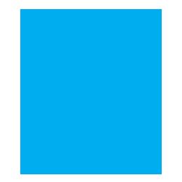 APA and MLA Style Citations