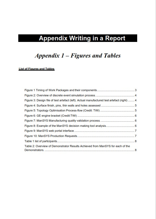 Appendix Writing in a Report