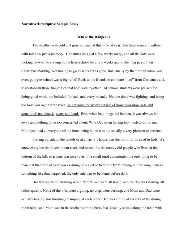 Narrative Descriptive Essay Example (PDF)