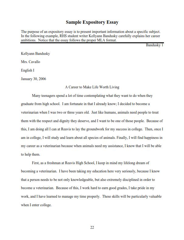 Short Expository Essay Example (PDF)