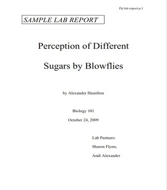 Simple Lab Report Example