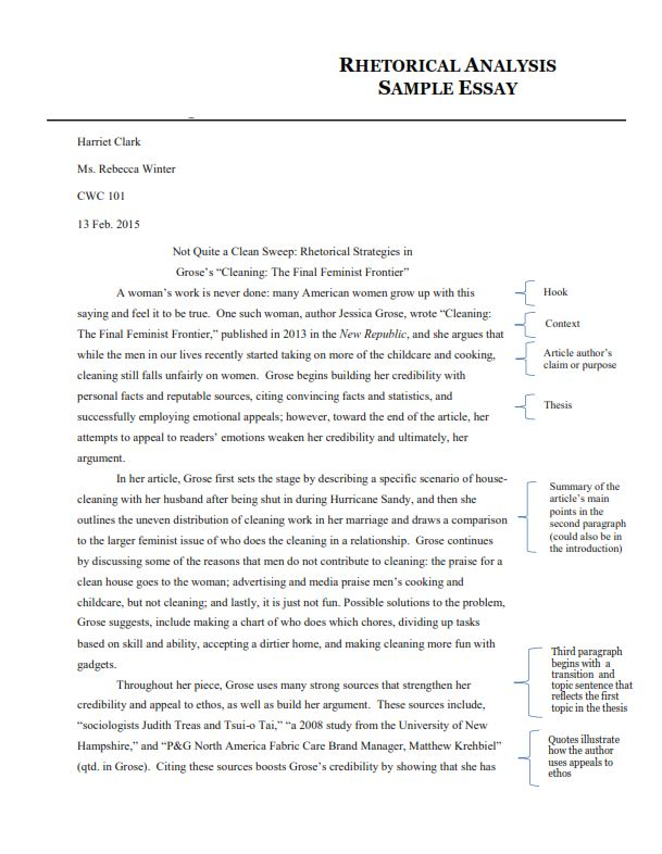 Rhetorical Analysis Essay Sample (PDF)