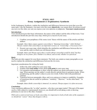 Explanatory Synthesis Essay Outline Example