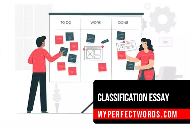 Classification Essay: An Easy Guide & Example