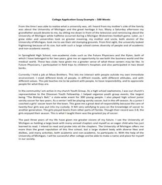 500 Words College Application Essay Example (PDF)