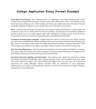 College Application Essay Format Example (PDF)